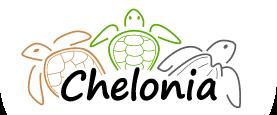 Chelonia PR